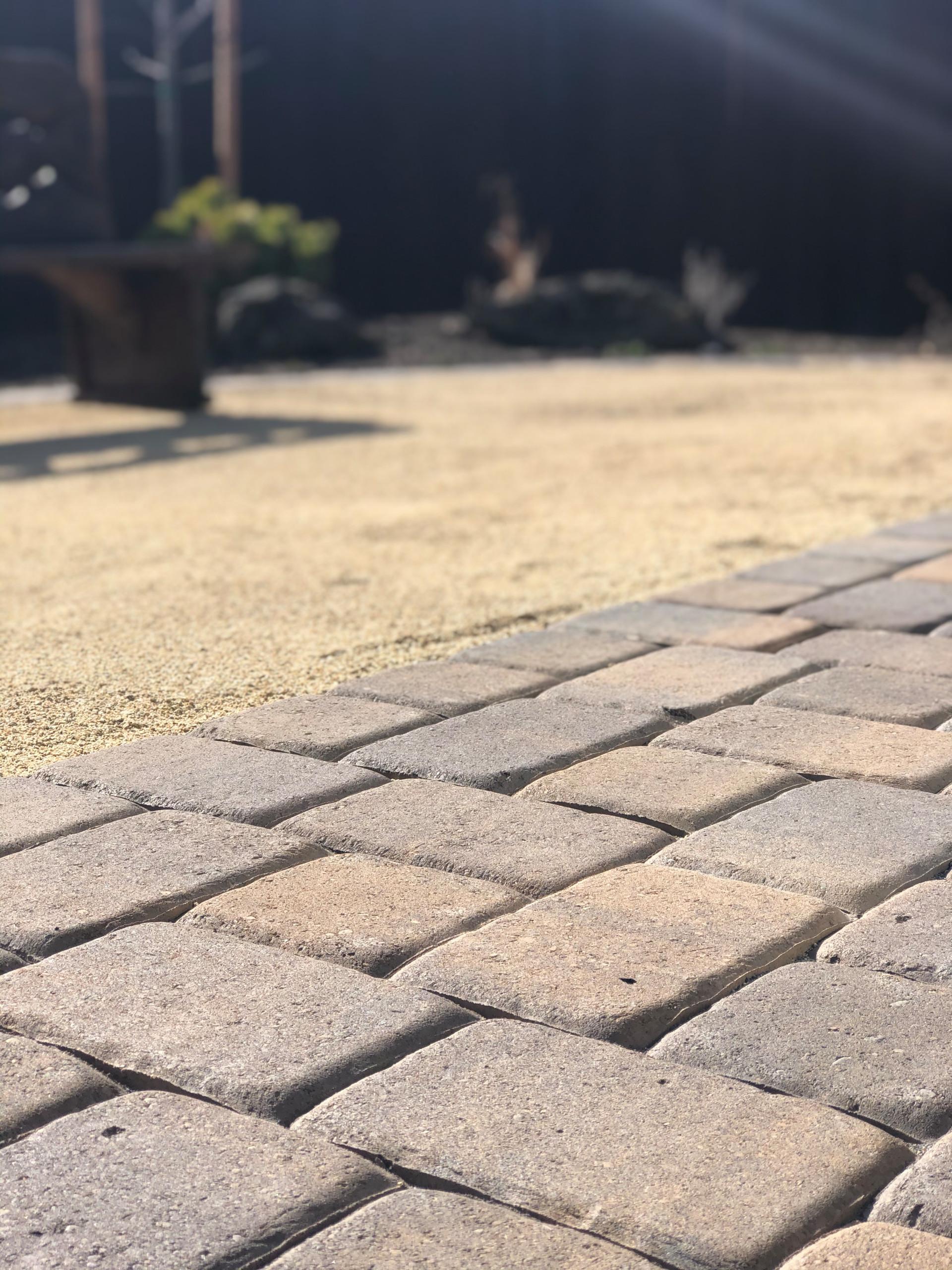 Xeriscape Backyard