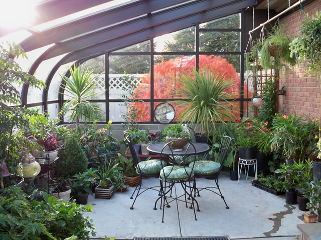 Yo Greenhouse Interior Traditional Patio