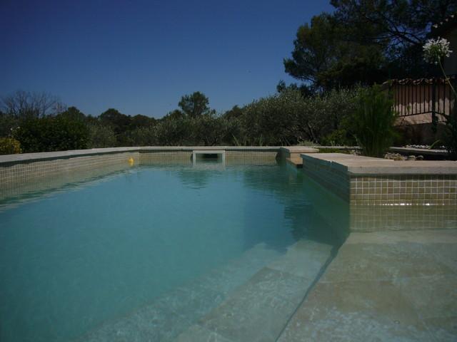 Conception d 39 un bassin biologique dans la vaunage m diterran en piscine montpellier par - Bassin rectangulaire m montpellier ...
