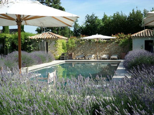 Jardin A Saint Remy De Provence Mediterraneen Piscine