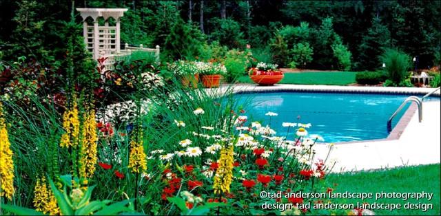A pool in the garden minnesota swimming pool design for Pool design mn