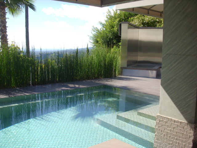 A Stainless Steel Fountain Serves As A Visual Backstop contemporary-pool