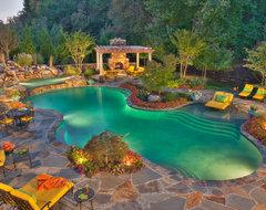 Ali Project contemporary-pool