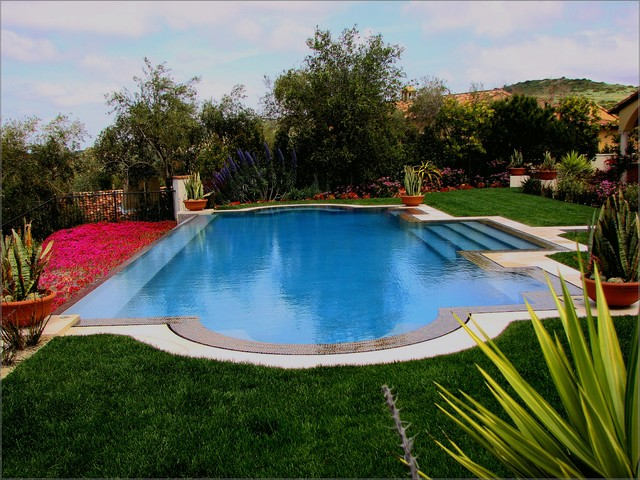 Ams landscape design studios inc mediterranean pool for Pool landscape design