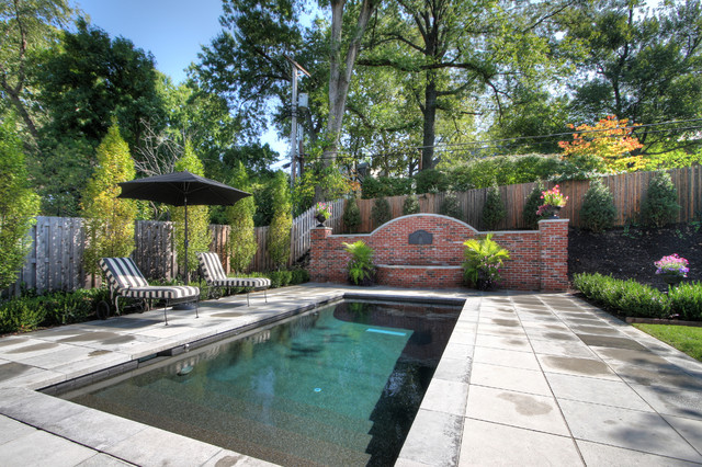 an elegant swimming pool traditional pool st louis
