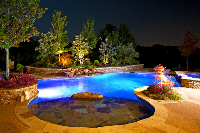 aston park natural pool outdoor living design traditional pool