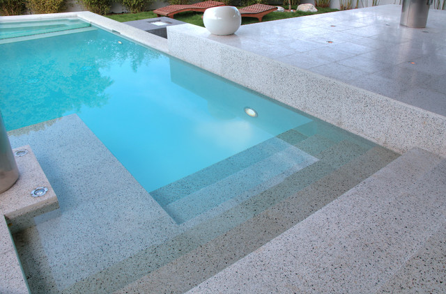 Astral Dr contemporary-pool