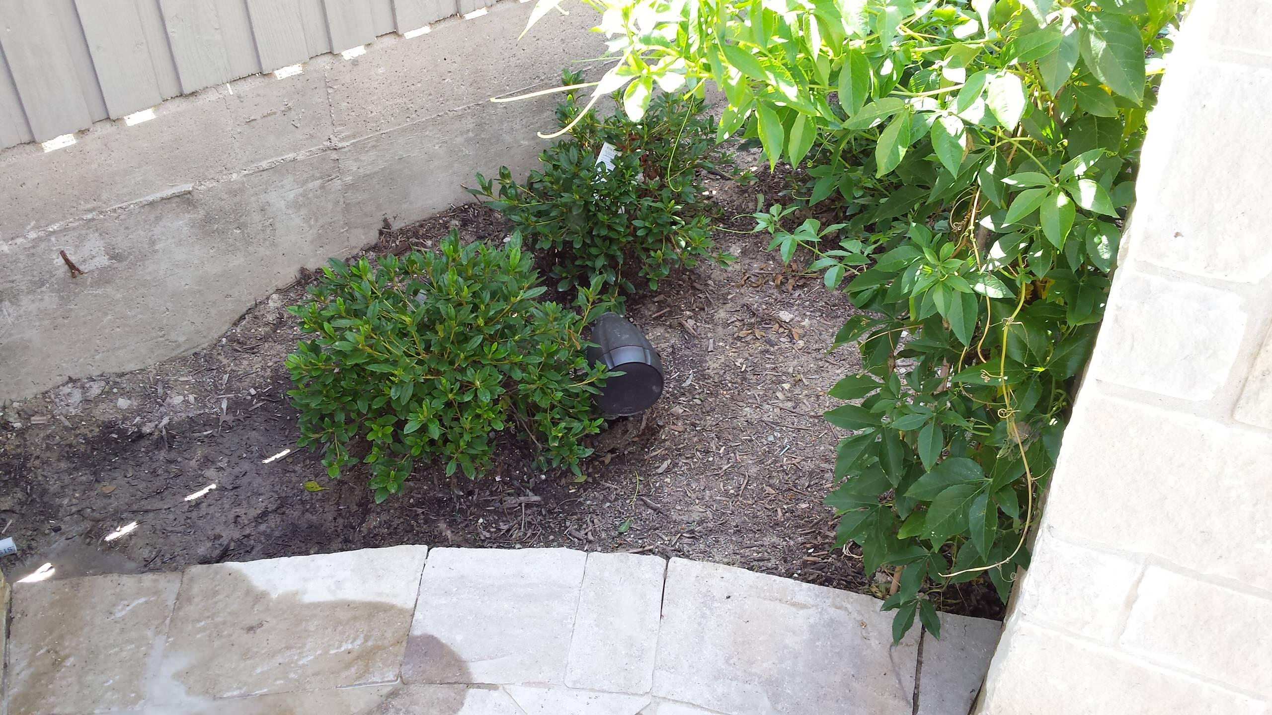 Back Yard A/V - Polk Landscape Speaker