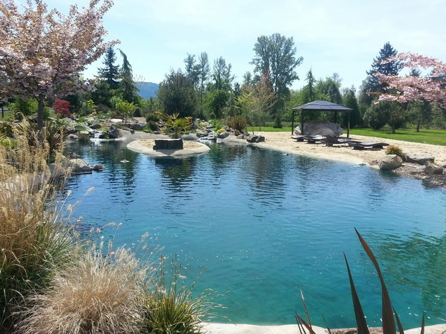 backyard beach retreat pacific nw spring tropical pool other
