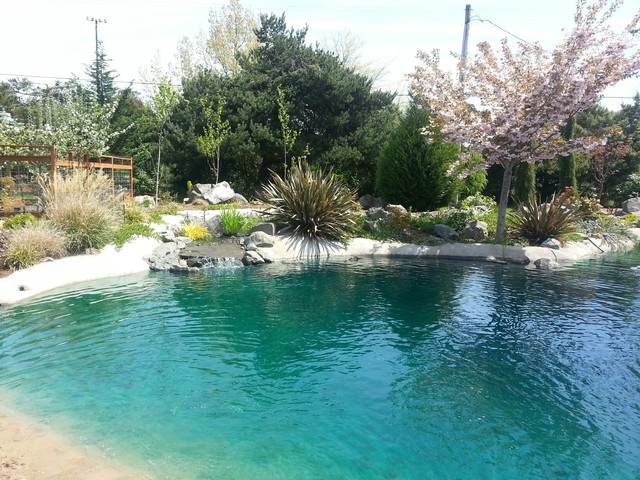 Backyard Beach Retreat (Pacific NW) Spring - Tropical - Pool - other metro - by Schelsky's ...