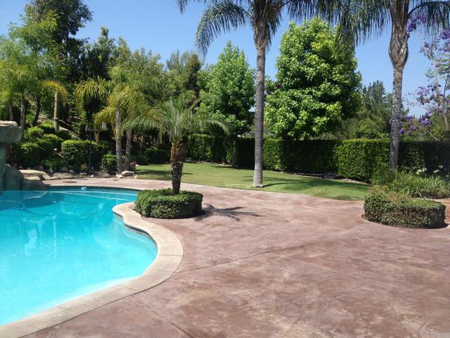Backyard makeover mediterranean pool los angeles for Backyard makeover with pool