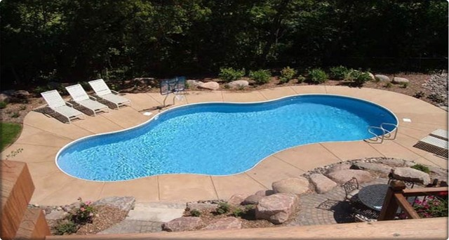 backyard pool traditional-pool