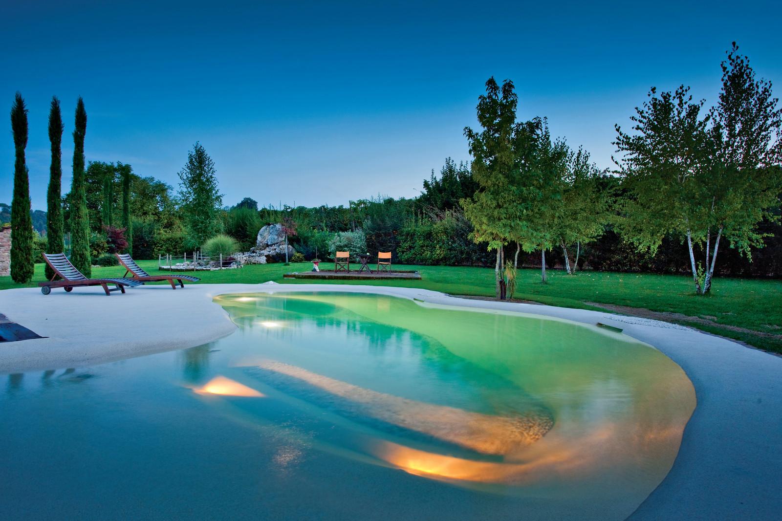 Beach Sculpted Biodesign Swimming Pools