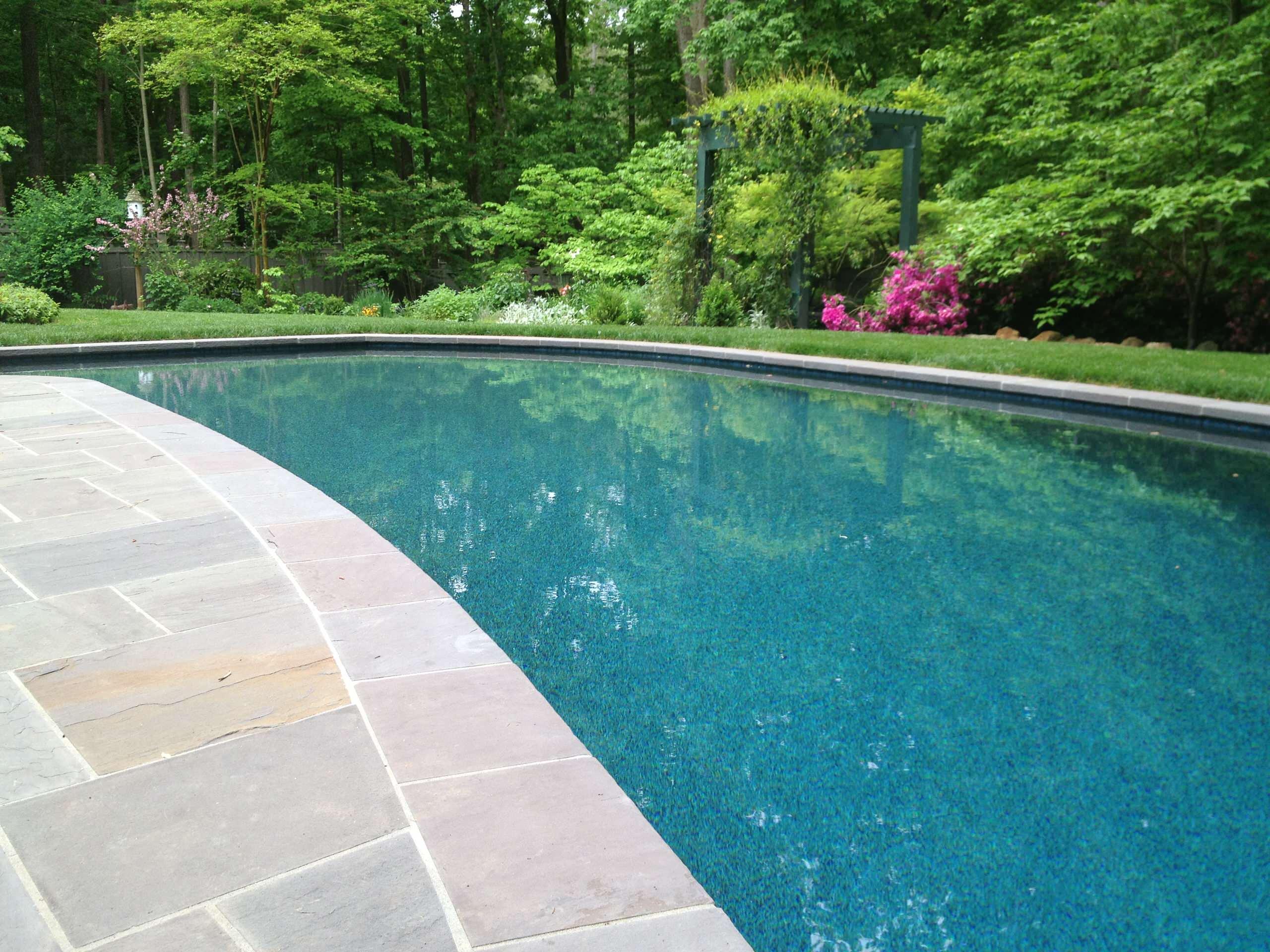Beautiful Swimming Pool Renovation