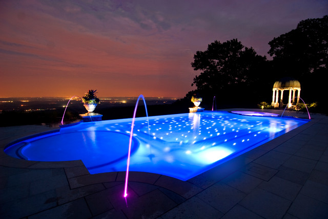 Photo Of A Large Modern Backyard Custom Shaped Infinity Pool In New York  With A