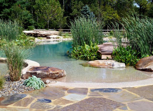 A Natural swimming pool built by Natural Swimming Pools Australia