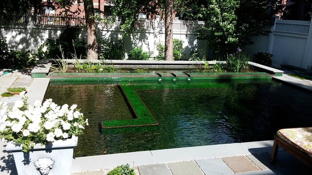 Bionova Natural Swimming Pool Boston Ma Pool Other By Bionova Natural Pools