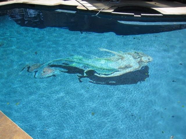 Blue mermaid swimming pool eclectic pool houston by agape tile