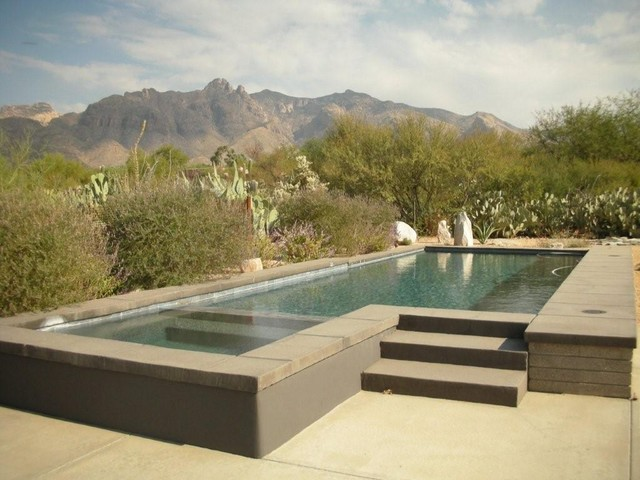 Boxhill design pools modern pool phoenix by boxhill for Pool design by poolside