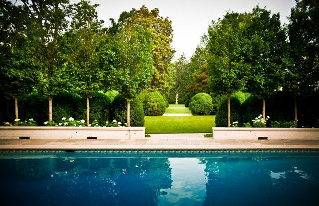 Boxwood Traditional Pool Nashville By Page Duke