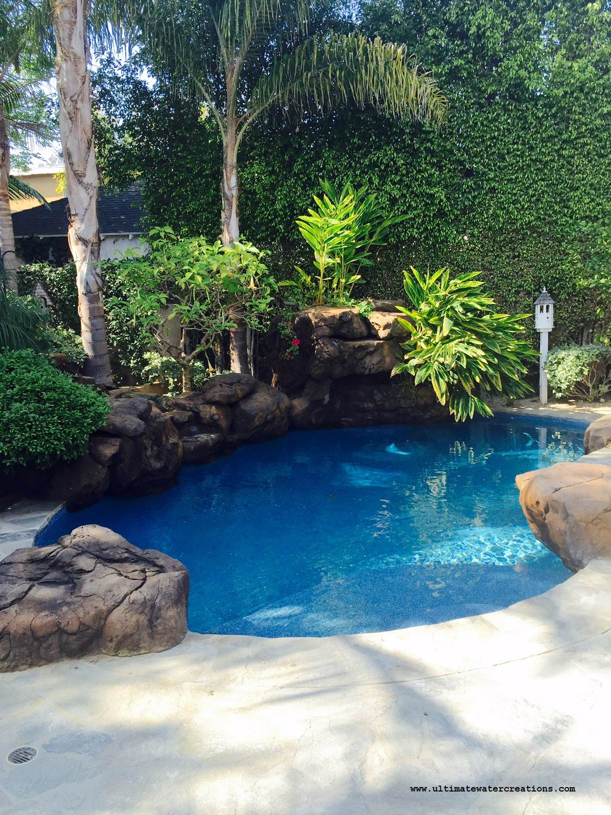 Brentwood Naturalistic Pool & Spa with Waterfalss