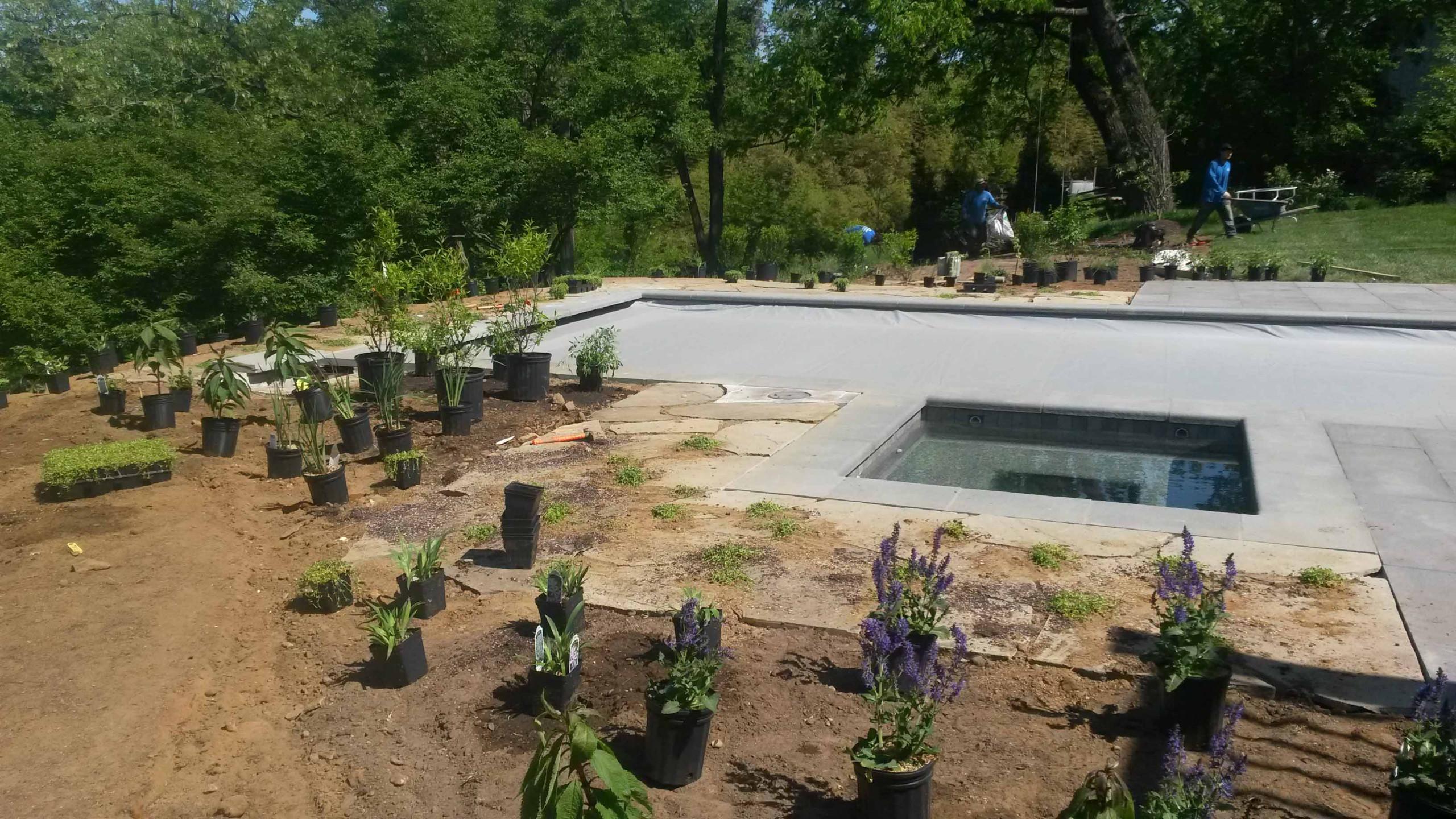 Chesapeake Bay Shore Project