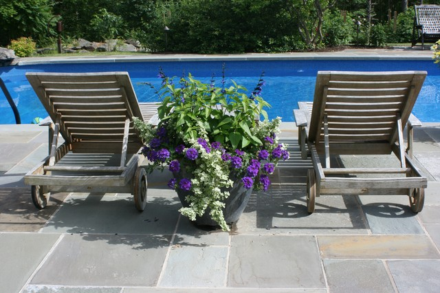 Container Gardens contemporary-pool