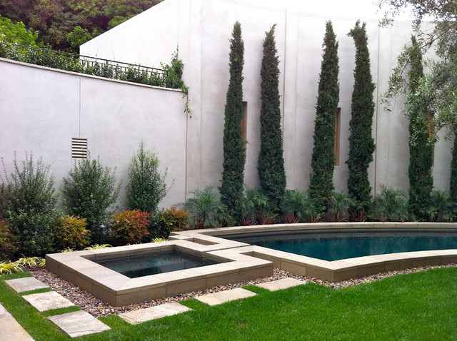 Contemporary la jolla landscape architecture courtyard for Italian pool design 7