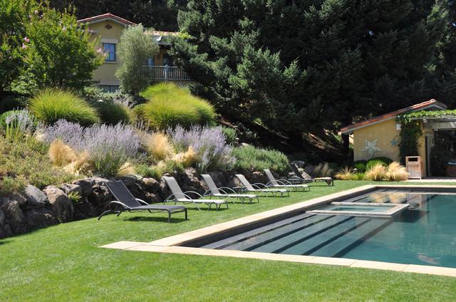 Contemporary Pool mediterranean-pool