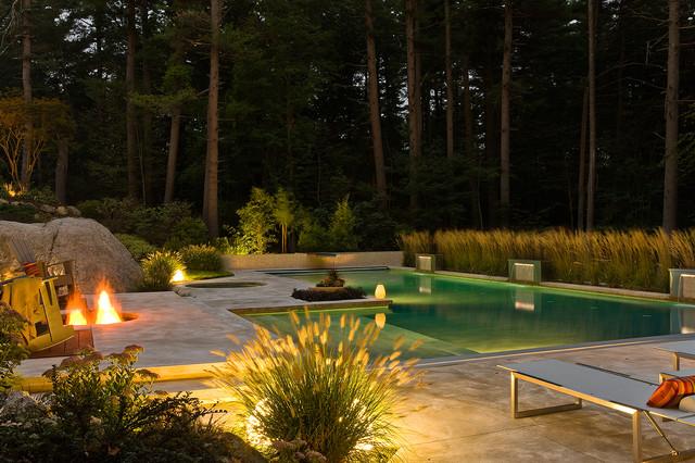 Contemporary Pool contemporary-pool