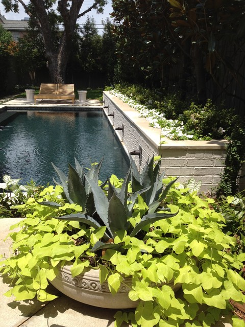 Contemporary Spanish / Mediterranean eclectic mediterranean-pool