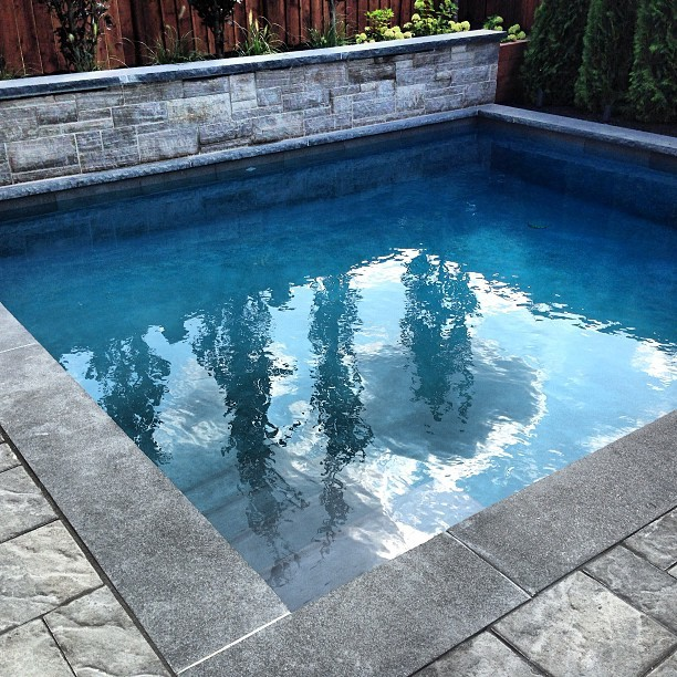 custom plunge pool landscaping traditional pool