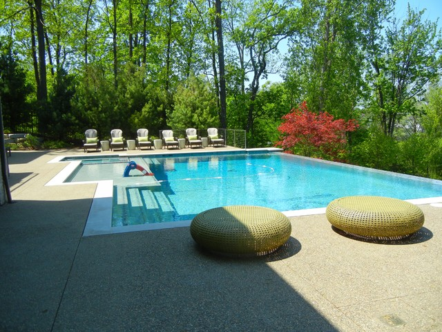 Customized Pool Designs & Pool Decks contemporary-pool