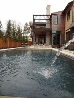 Dallas contemporary-pool