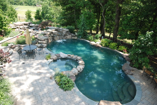 Darnestown naturalistic pool contemporary pool for Pool design washington dc