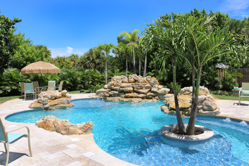What kind of palm tree is in the middle of the pool - Palm beach swimming pool ...