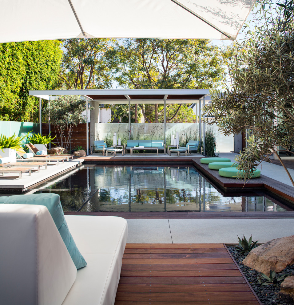 Large trendy backyard concrete and rectangular hot tub photo in San Diego