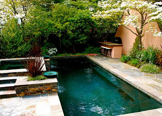 Dream Retreat Traditional Pool Sacramento By
