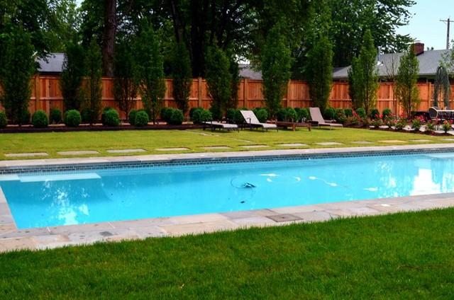 European Elegance contemporary-pool