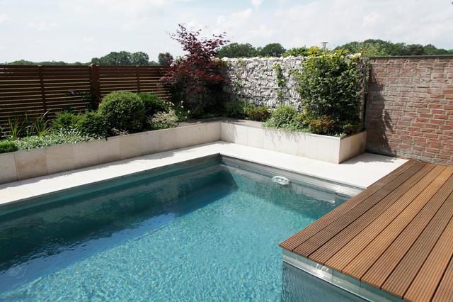 Exclusive Natural Pool Garden - Contemporary - Pool ...
