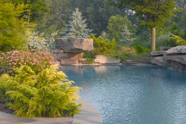 Featherbed Estate traditional-pool