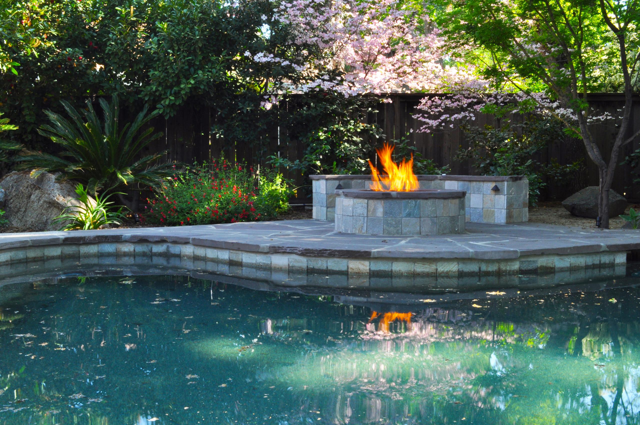 Fire + Dogwood