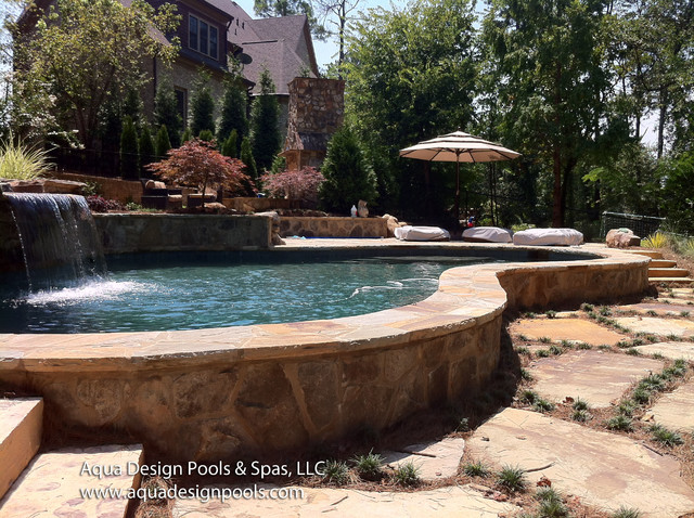 Free form pool with all features craftsman pool for Pool design by laly llc