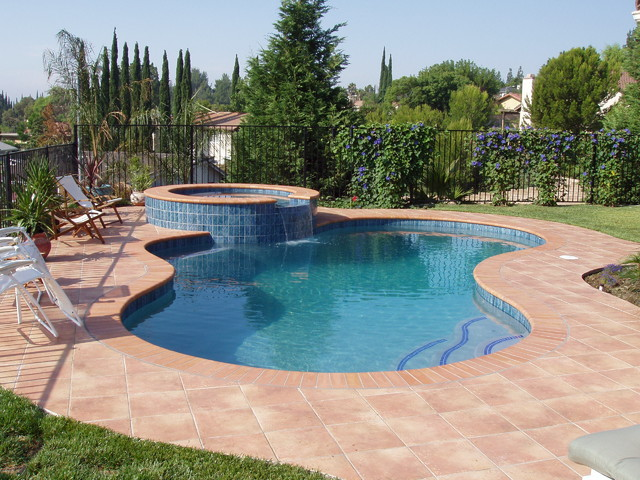 Freeform style pools traditional pool los angeles by symphony pools inc for Natural swimming pools los angeles