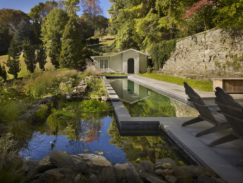 Inspiration for a timeless natural pool remodel in Philadelphia