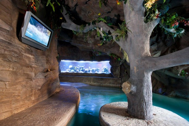 Cool pool tables - Grottos Tropical Pool Houston By Marquise Pools