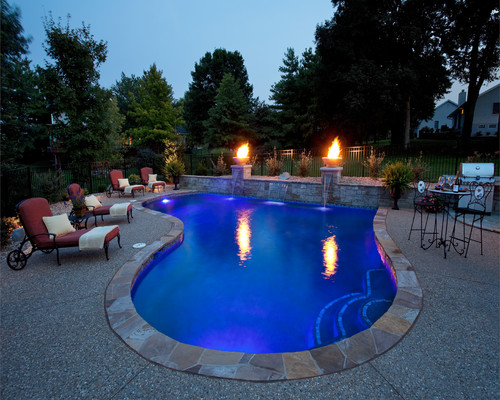 Tear Drop Pool with Tanning Ledge