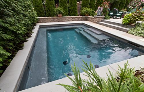 Haddonfield NJ Residence #1 traditional-pool