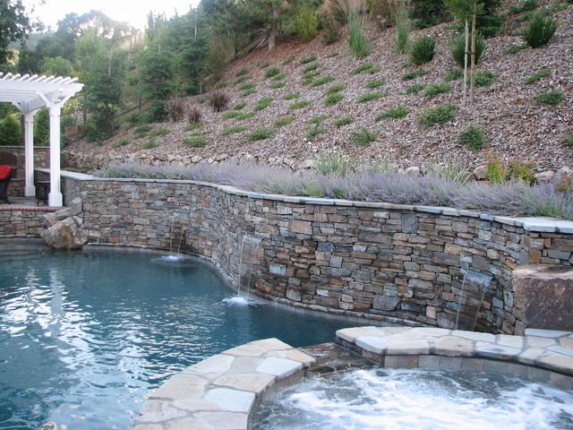 Hillside Elegance traditional-pool