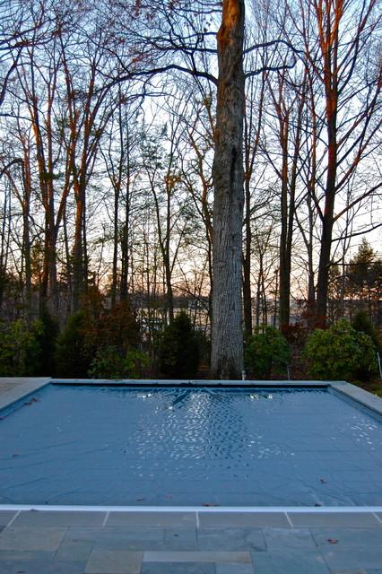 Historic Renovation traditional-pool
